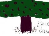 l'albero di castagno